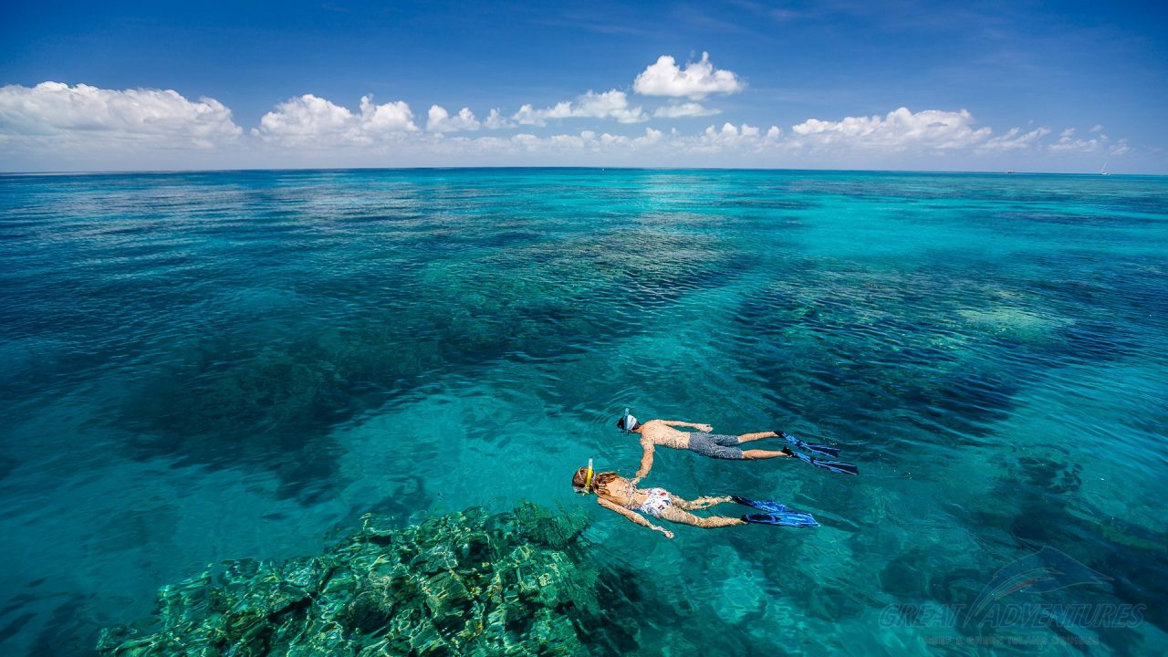 great-adventures-outer-barrier-reef-124145-1920-1-1280x720.jpg